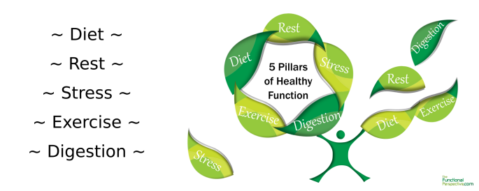 5 Pillars to Healthy Function - Diet - Rest - Stress Management - Exercise - Proper Digestion